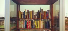 Un anno di Bibliocabina