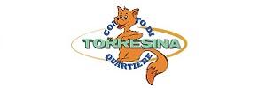 Petizione Mobilità di zona Torresina